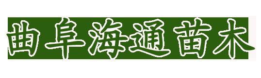 红枫树logo