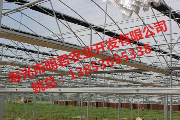 连栋玻璃温室大棚专业设计建造——连栋玻璃温室大棚