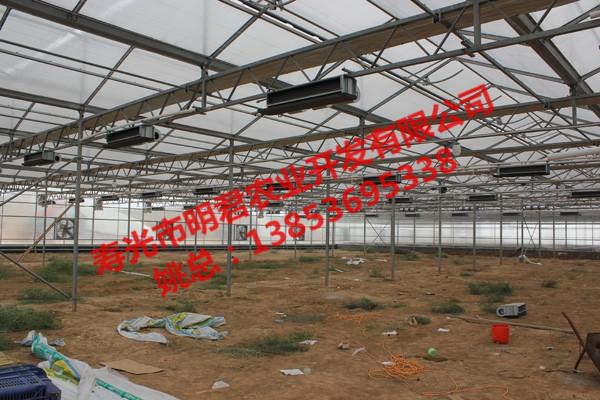 PC阳光板温室大棚认准明君农业-PC阳光板温室大棚搭建