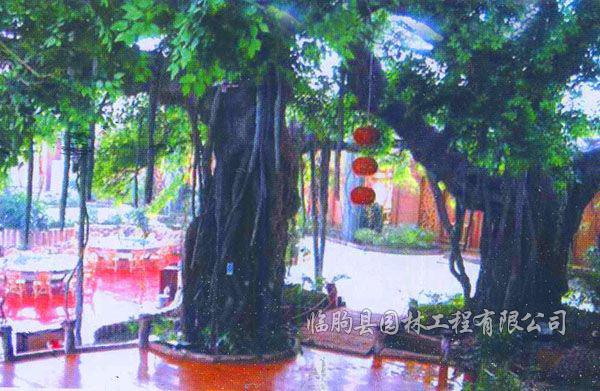 仿真植物报价-供应潍坊优惠的仿真假树