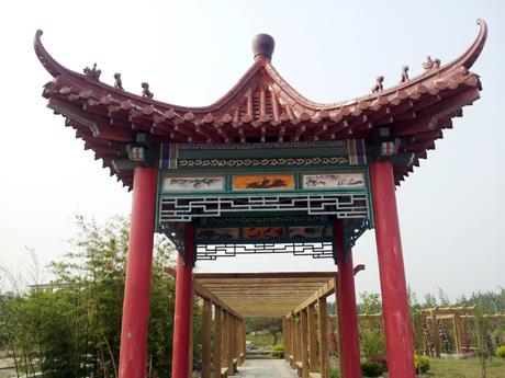 天景木业提供好的景观设计制作服务-青州景观设计