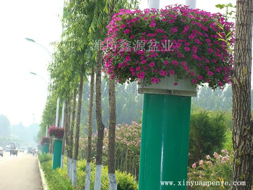景观灯杆花盆