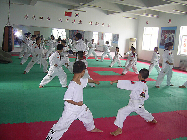 东营跆拳道