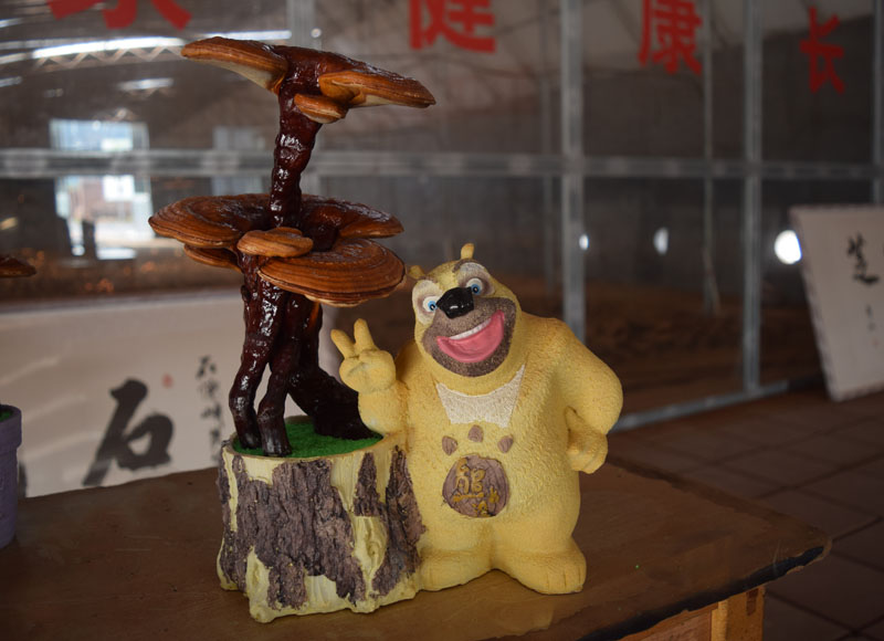 淄博灵芝盆景-淄博优惠的灵芝盆景供应
