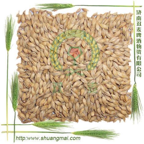 麦芽提取物 麦芽精粉