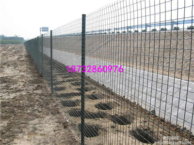 圈地绿色护栏网、浸塑绿色果园围栏网、浸塑荷兰网、荷兰网厂家