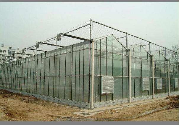 温室大棚玻璃温室大棚玻璃温室大棚厂家