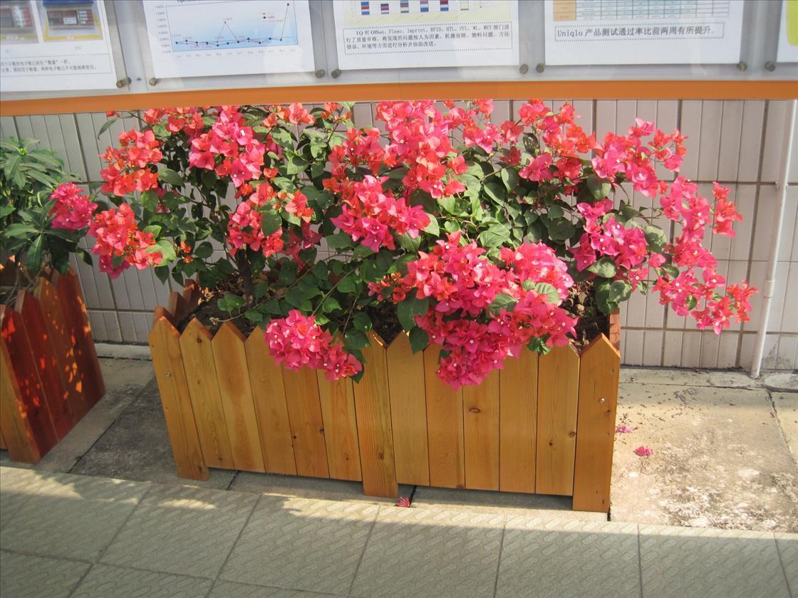 杭州超好的木质花盆组合花盆定制花盆厂家