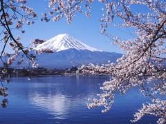 紅花崗出境游:可靠的日本州豪華六日游哪家提供