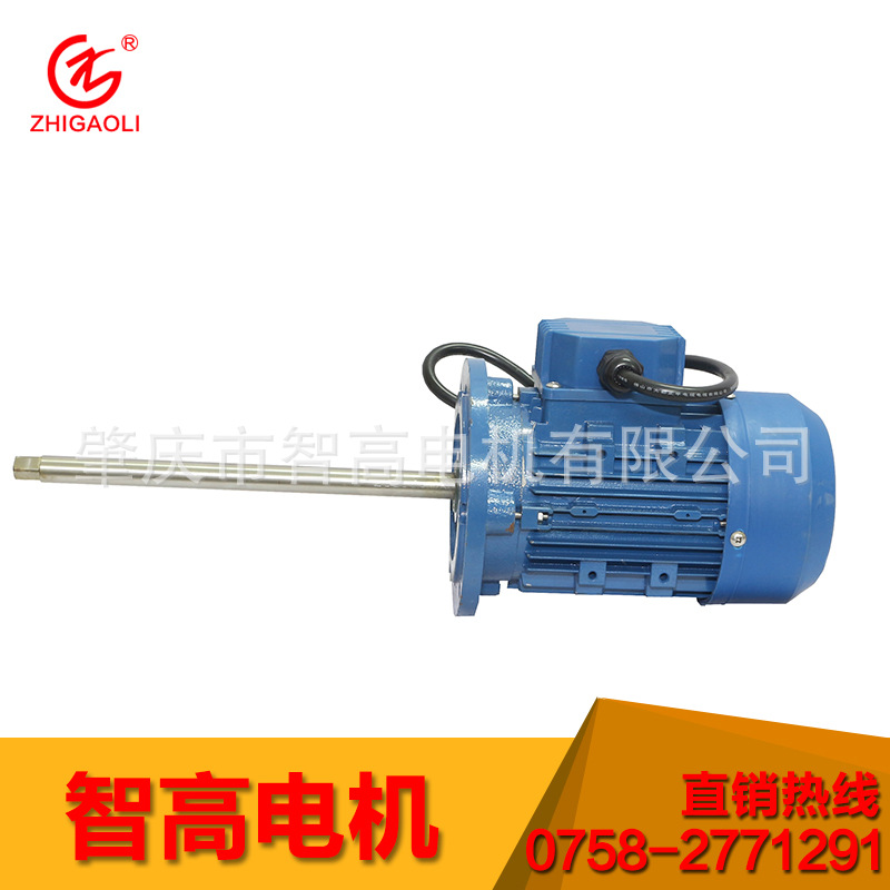 化工系列泵专用电机