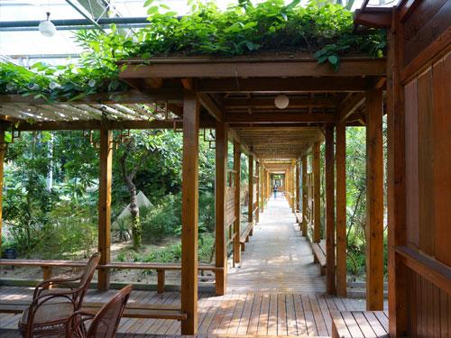 室外木质结构特种油化