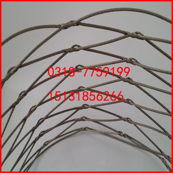 高防腐长寿命不锈钢装饰网-大量供应各种划算的316不锈钢钢丝绳编织网