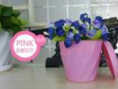 宁德塑料花盆-建腾塑胶供应可靠的绿化工程