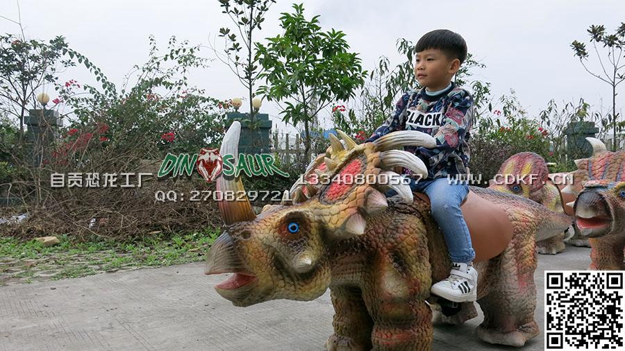 博一艺术具有口碑的行走恐龙出售——恐龙皮套样式时髦