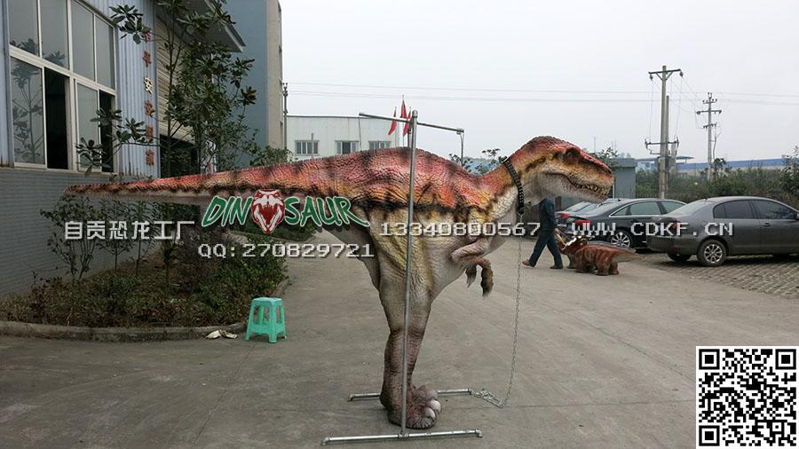 古典藏腿恐龙皮套,博一艺术供应新品藏腿恐龙衣服