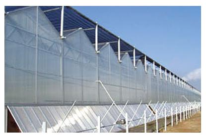 河南阳光板温室建造-风山温室园艺供应具有口碑的阳光板温室工程