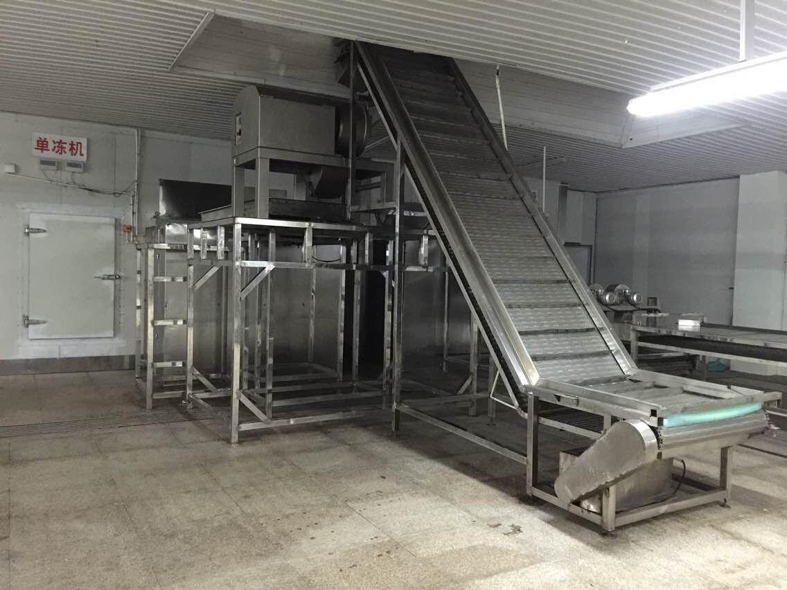优质的速冻机-专业的速冻机供应商_亿龙机电