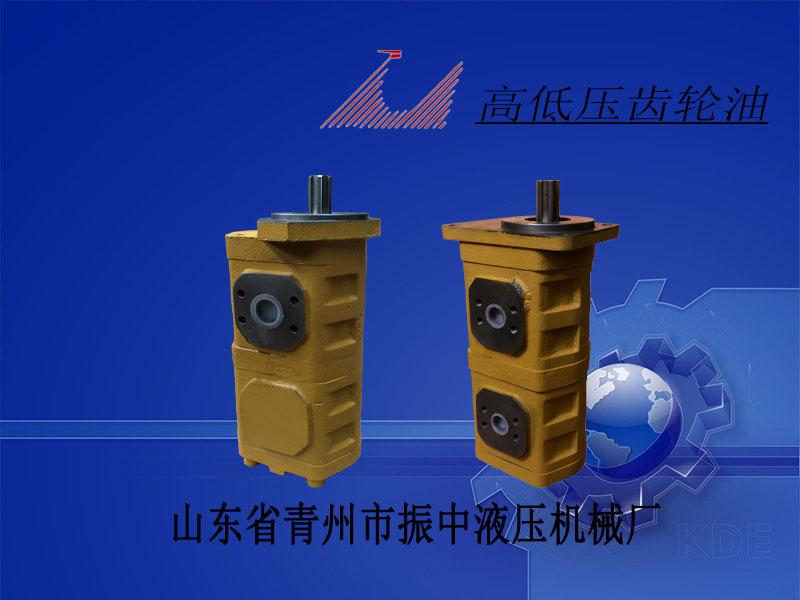 振中液压机械专业供应山东青州CBGJ2/2高压双联齿轮泵|莆田山东青州CBGJ2/2高压双联齿轮泵