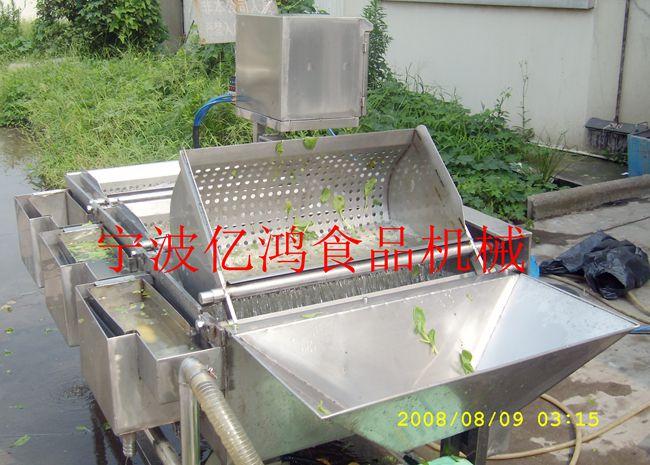 山西圣女果清洗分级生产线_浙江高性价蕃茄鼓泡毛刷清洗机供应