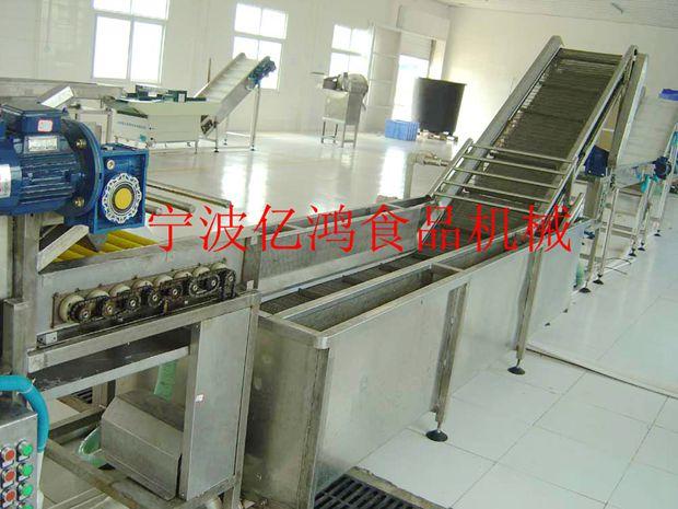 專業的蕃茄鼓泡毛刷清洗機供應商_億鴻食品機械-浙江圣女果清洗分級生產線