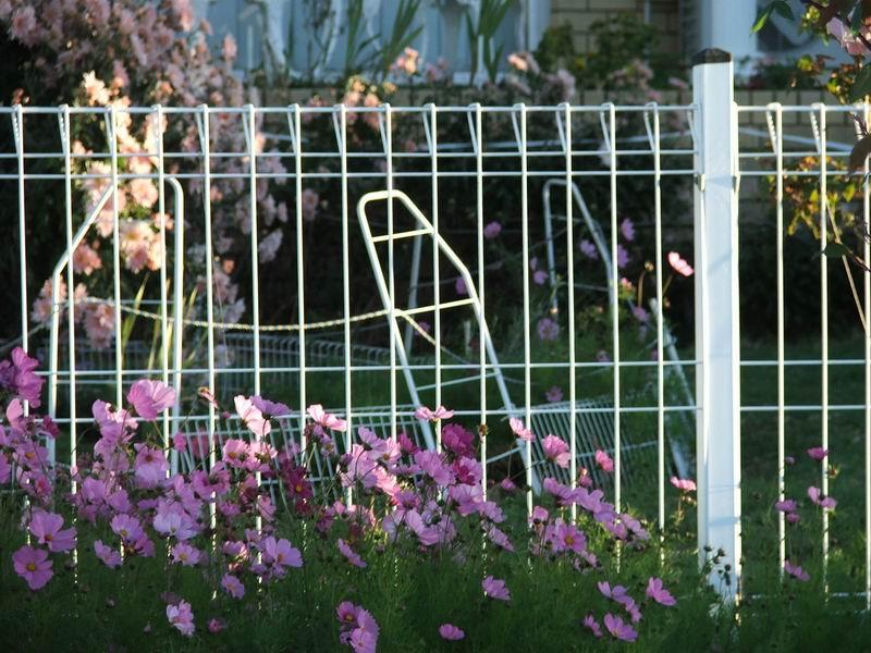 福州园林围栏供应商_为您推荐销量好的园林围栏