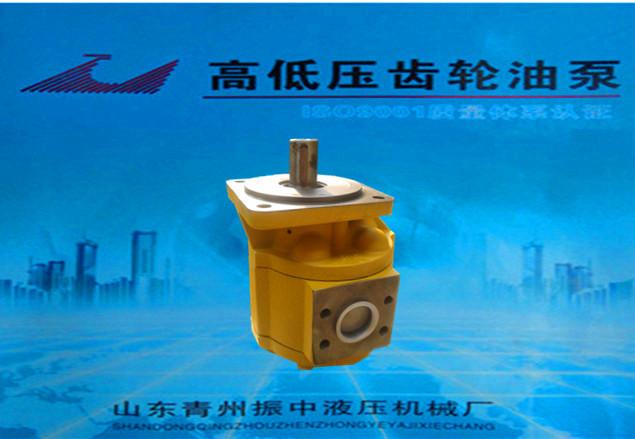 廣西CBG2080花鍵|規模大的CBG2080齒輪油泵廠家