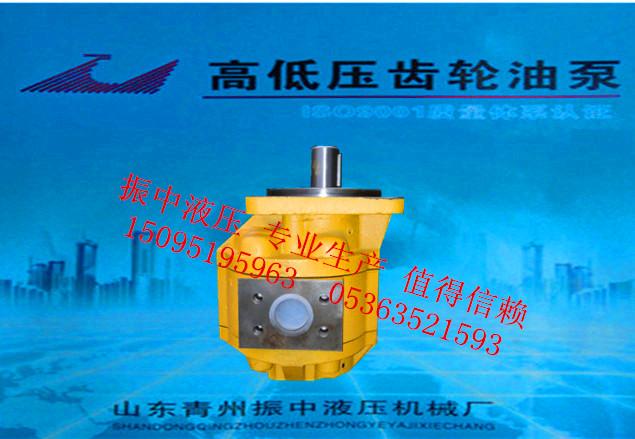 專業生產CBG齒輪油泵_質量好的CBG高低壓齒輪油泵就在振中液壓機械