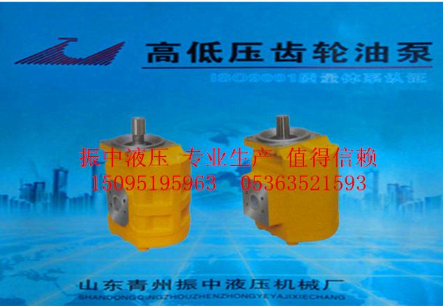 青州推土機齒輪油泵供應|供應山東專業的推土機齒輪油泵