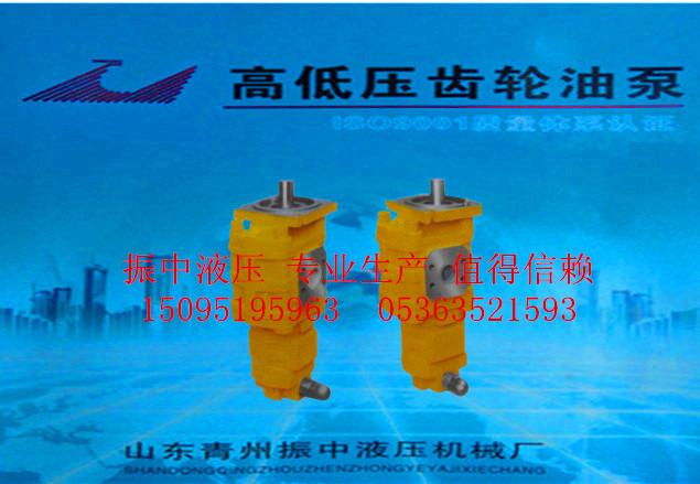 濰坊裝載機齒輪油泵-在哪里能買到雙聯齒輪油泵